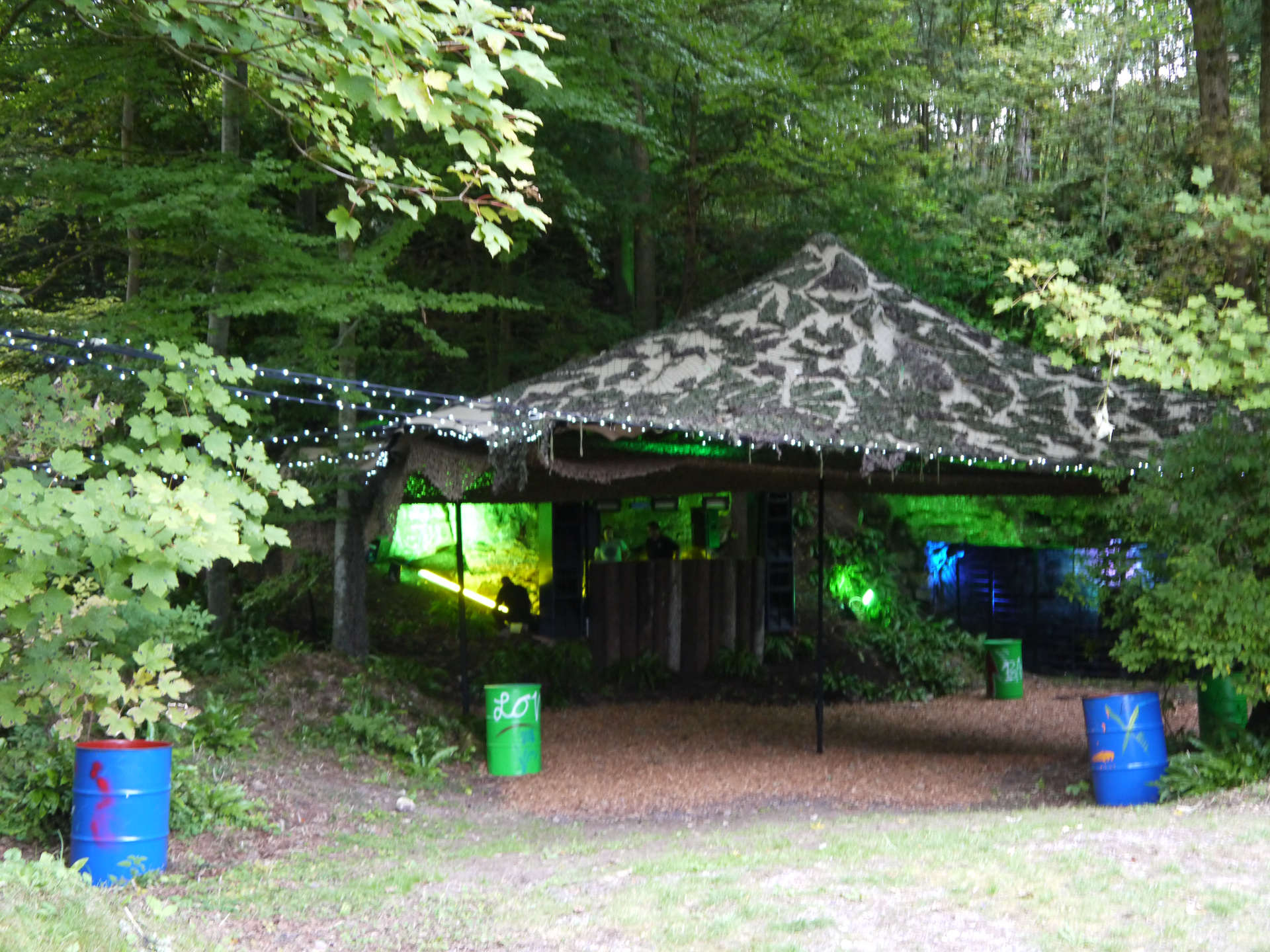 Woodland Theme Birthday Party